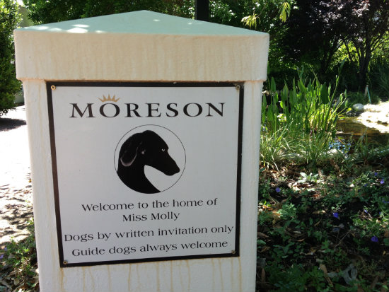 Moreson-winery-Franschhoek