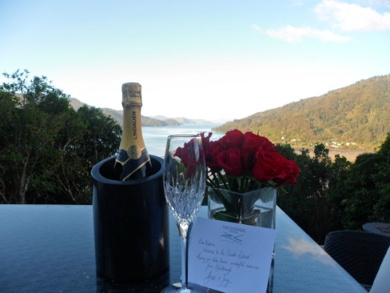 The Sounds Retreat in Queen Charlotte Sound New Zealand