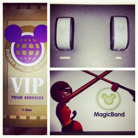 Disney-VIP