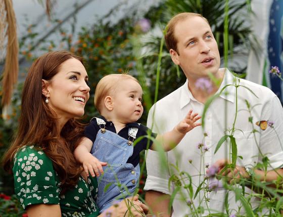 Prince George butterflies